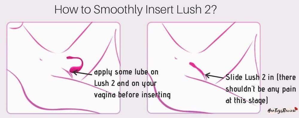 how to insert lovense lush 2